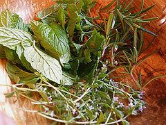 365.184: Garden herbs